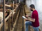 Tecnologia na fazenda